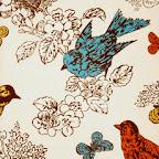 thomas paul birds.jpg