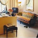 Drew Barrymore's Ikat Sofa