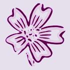 ABC Women's Clinic icon