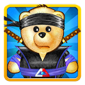 Ice Math Ninja icon