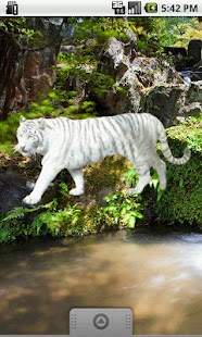 White Tiger Sticker- screenshot thumbnail