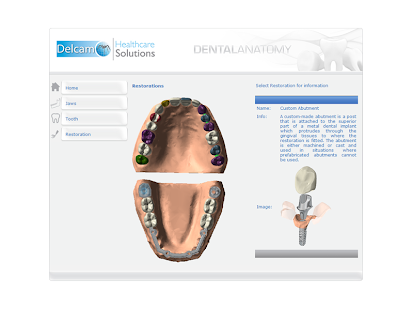 Dental Anatomy screenshot for Android