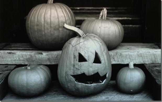 Get Microsoft Halloween Desktop Themes Pics