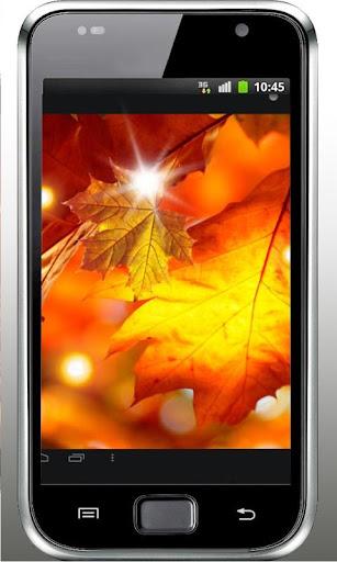 Autumn Free HD live wallpaper