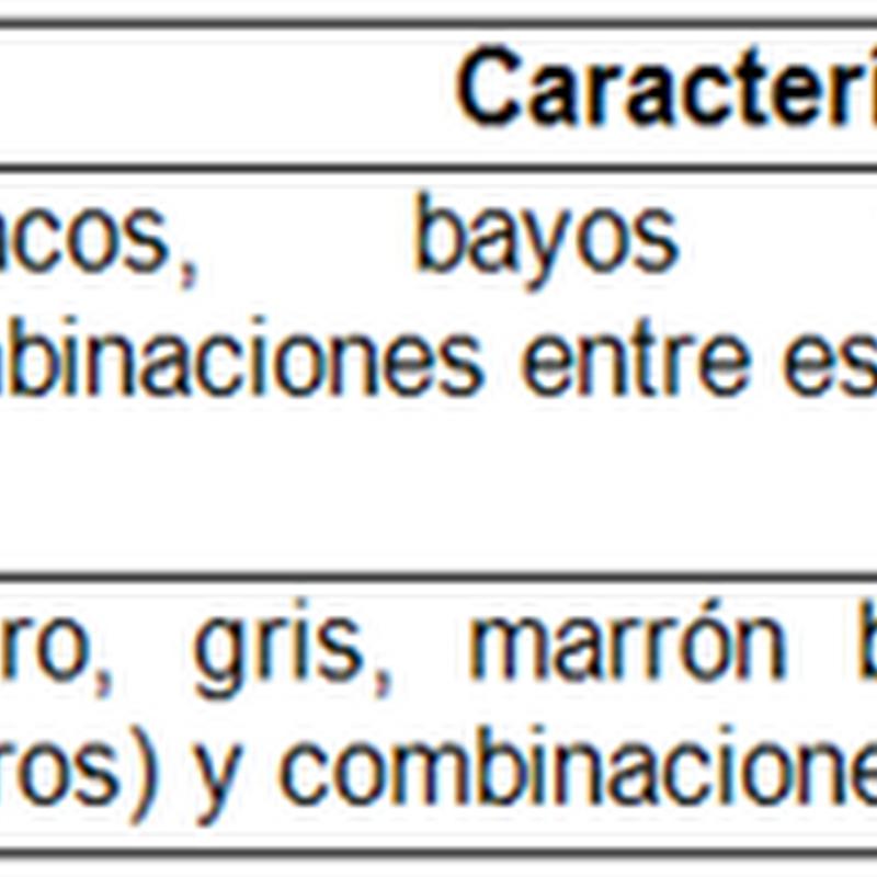 CLASIFICACION SEGÚN LA COLORACION DEL PELAJE EN EL CUY
