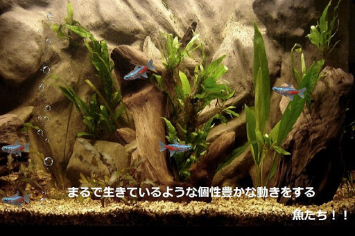 smartAQUARIUM-Blue package-