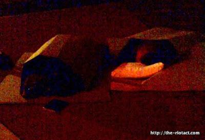ceo's sleeping rough