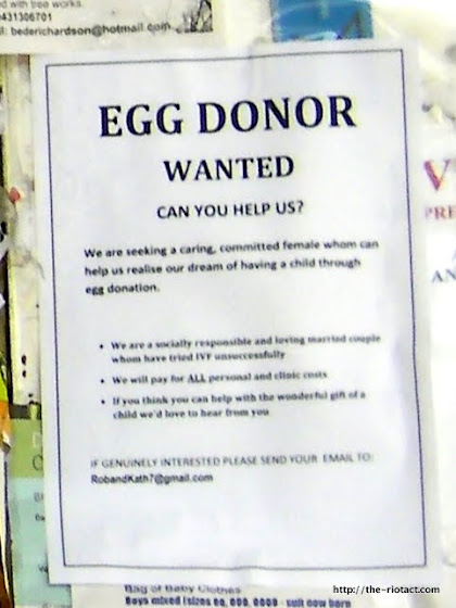 Egg donor