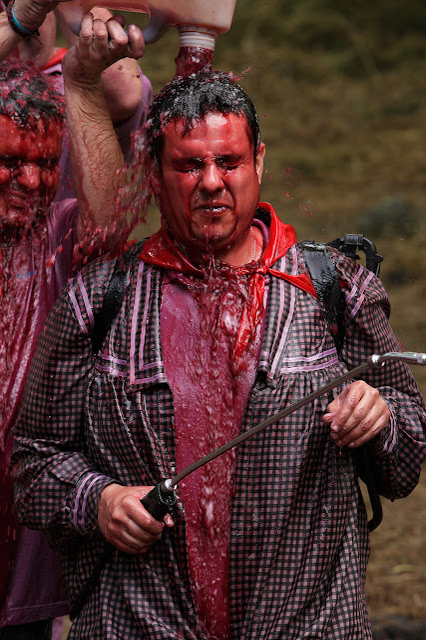 La Batalla del Vino, 29 de junio, la batalla a los pies de los riscos de Bilibio, Rioja Alta, DOC La RiojaHaro, la Rioja,