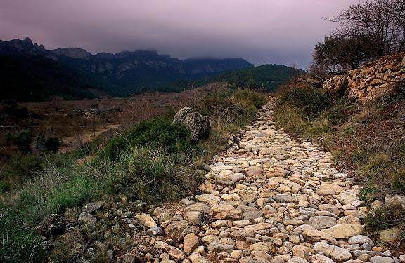 Empedrat del camí vell de Colldejou a Montroig (Falset a Reus pel coll del Guix). Camí de ferradura. Darrera la serra de LlaberiaColldejou, Baix Camp, Tarragona