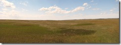 6731 Prairie Wind Overlook Badlands National Park SD Stitch
