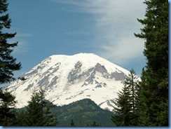 1169 Mount Rainier National Park WA