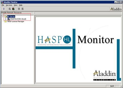 Aladdin monitor: looking at the HL-Server node
