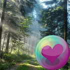 Trees & Forest HD Wallpapers icon