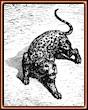 Gustave Doré. El leopardo. Grabado