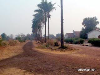 – Une avenue de Kisenge couvert de Manganese.