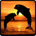 Dolphins in Sunset HD GoLocker icon