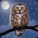 Owl Landscape icon
