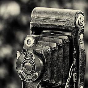 by Walter Farnham - Artistic Objects Antiques ( black and white, verticle, camera, tripod, floding camera,  )