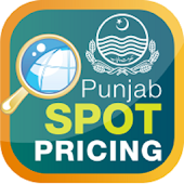 Punjab Spot Pricing