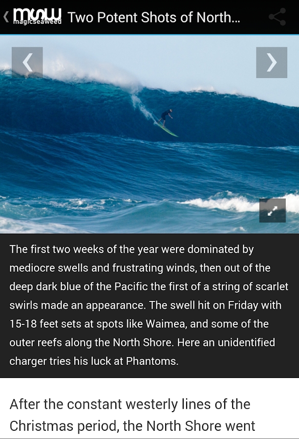 MSW Surf Forecast- screenshot