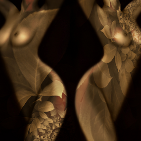 Twins by Carmen Velcic - Digital Art People ( abstract, body, nude, woman, she, lady, leaves, digital )
