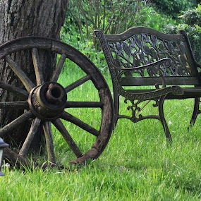 Illustration by J & M - City,  Street & Park  City Parks ( wheel, tree, wood, park, grass, green, illustration, image, bank, view, city, public, bench, furniture, object )