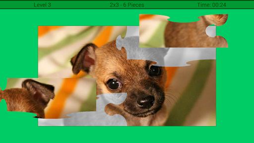 犬はパズル
