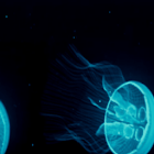 JellyFish  Live Wallpaper icon