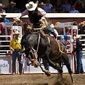 Cowboy Rodeo logo