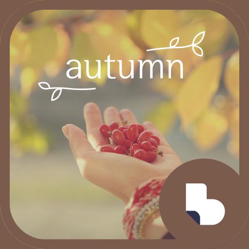 가을단풍 낙엽 버즈런처 테마 (홈팩)