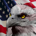 American Talking Eagle icon