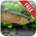 Aquarium Arowana LWP icon