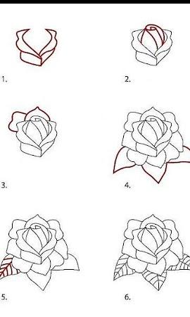 comment dessiner un rose