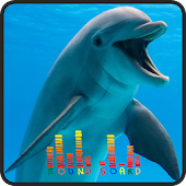 Dolphin Soundboards