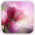 Pink Roses .. file APK for Gaming PC/PS3/PS4 Smart TV