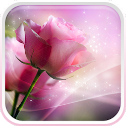 Pink Roses Live Wallpaper