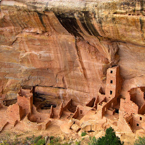 Square Tower House by Terry Niec - Buildings & Architecture Public & Historical ( mesa verde, cliff dwellings, square tower, ruins, anasazi,  )