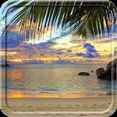 Beach Summer HD Live Wallpaper