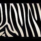 Zebra Theme GO Launcher EX