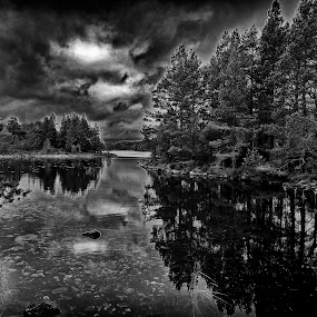 Loch an Eilein by Jacek Steplewski - Black & White Landscapes ( clouds, water, water reflection, black and white, waterscape, forest, lake, landscape,  )