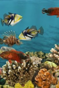 3D Aquarium Live Wallpaper HD - screenshot thumbnail