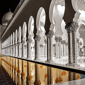 Gold Reflection by Ashraf Ahmed Habib - Buildings & Architecture Architectural Detail ( emirates, blackandwhite, reflection, mosque, colors, art, architecture, gold )