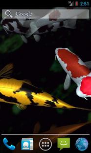 Magic touch: Koi Fish