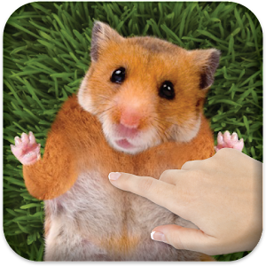 Tickle Hamster Icon