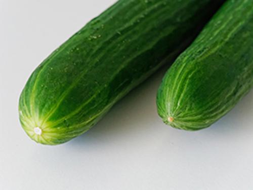 Cucumber Uses