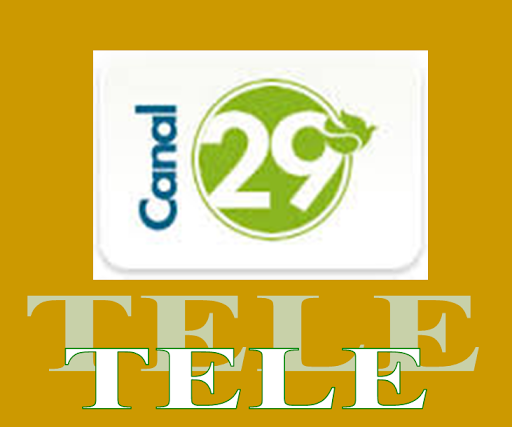 TV CANAL 29
