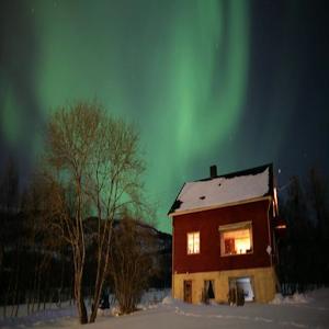 Aurora Borealis Live Wallpaper for PC