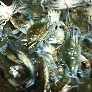 Julie's Deviled Seafood.