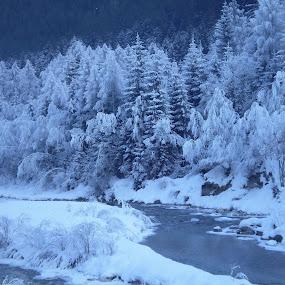 Brrrrrrrrrr.... by Riccardo Schiavo - Landscapes Weather ( , snow, winter, cold )